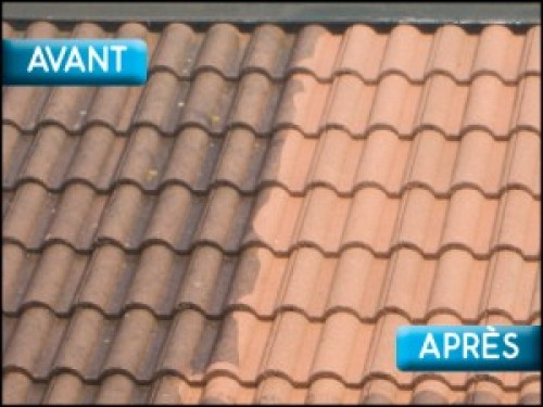 traitement toiture sarthe faire traiter son toit produit anti mousse. Black Bedroom Furniture Sets. Home Design Ideas
